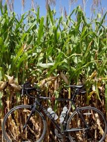 824-corn-bike