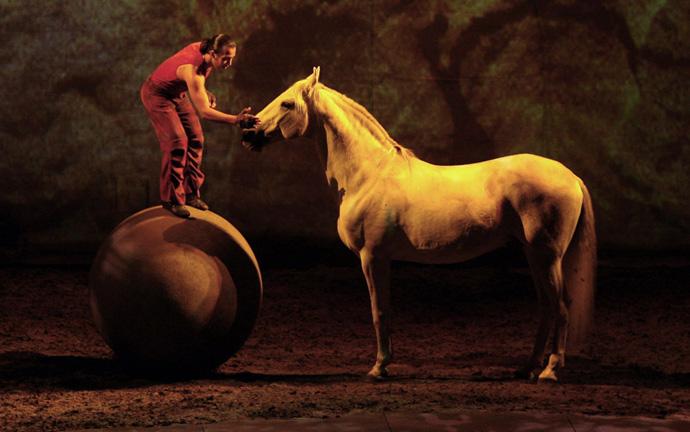 cavalia-ball-horse