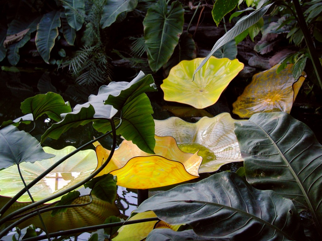 chihuly-pond