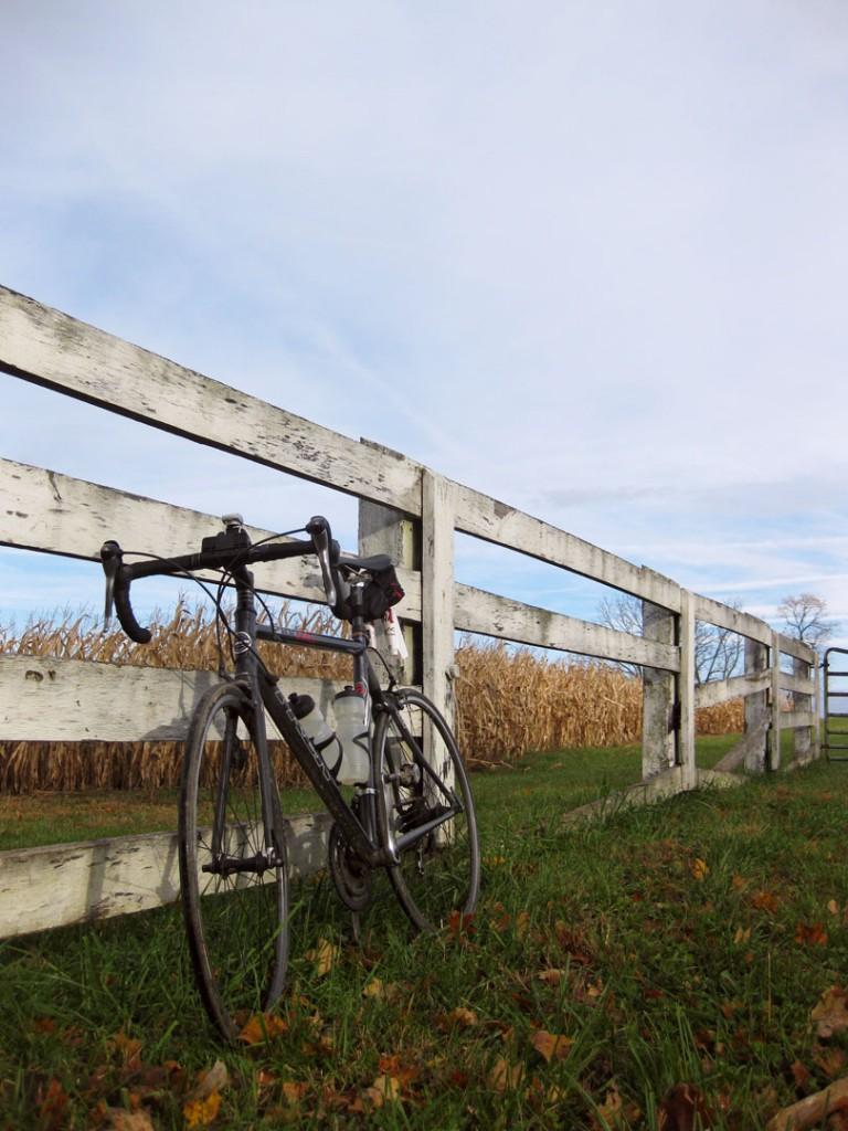 fence-bike1