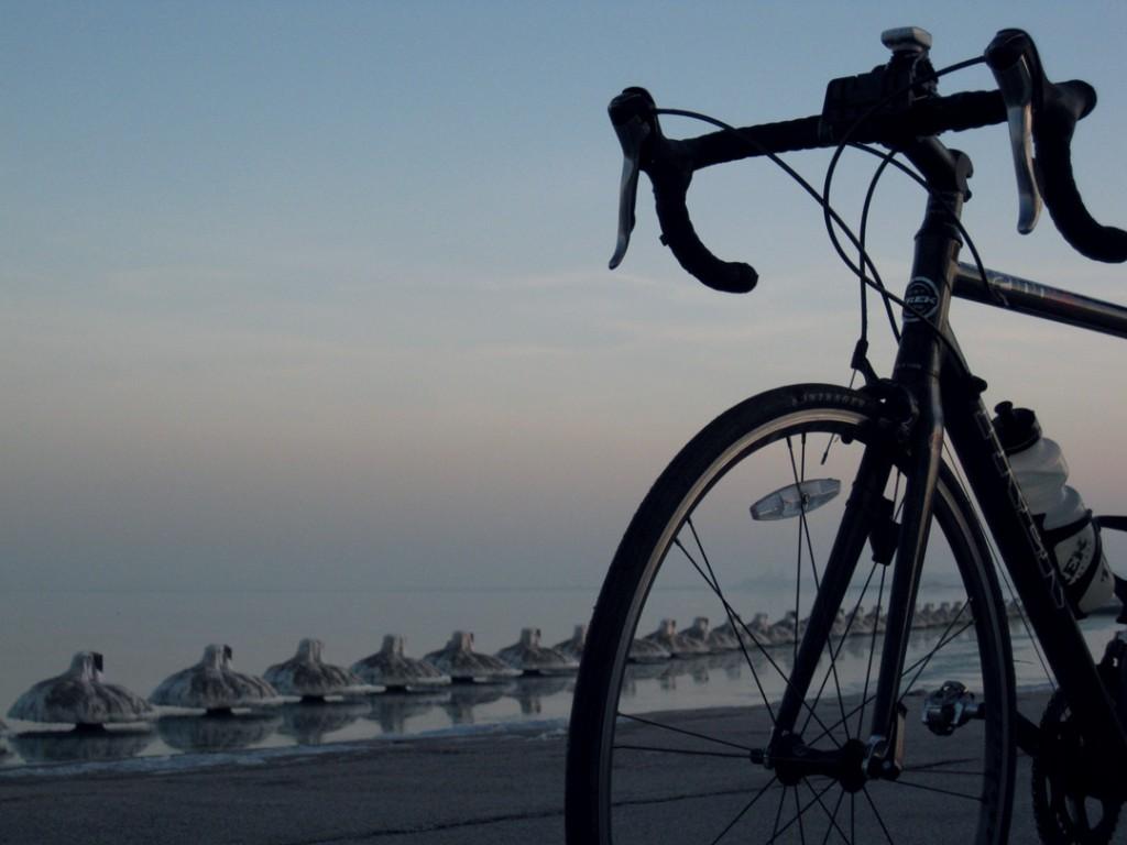 11710-frozen-pilings-bike