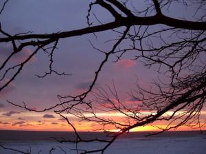 1.31.11 sunrise 6
