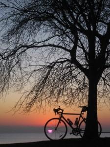 12.23.11 sunrise 1