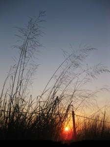 8.30.13 sunrise 20
