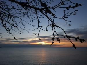 4.30.14 sunrise 6