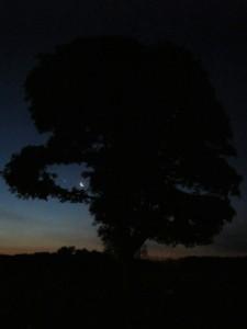 6.24.14 early sunrise