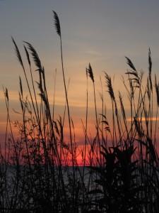 6.24.14 sunrise 8