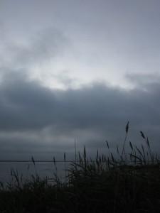 6.25.14 gray morning 5
