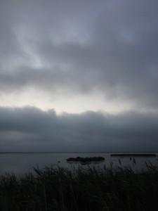 6.25.14 gray morning 7