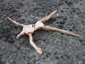 roadkill Barbie