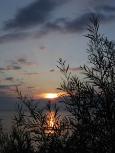 8.31.14 sunrise 12