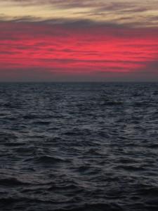 11.19.14 sunrise 10