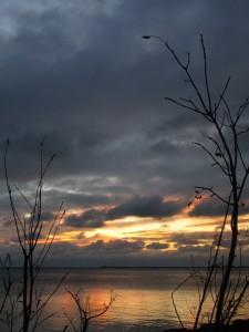 10.29.15 sunrise 8