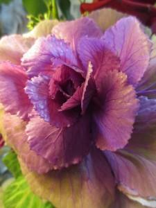 Cathi bouquet 2